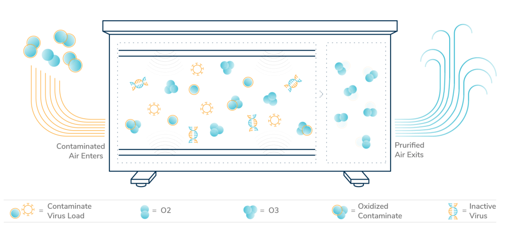 Diagram of how viruses and bacteria enter the Bluezone 450 UV air filtration unit and exit purified